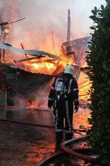 22 kalfjes overleden door brand in stal Friesland