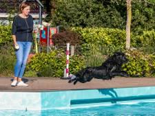 Honden nemen laatste duik in zwembad Loo-Bathmen