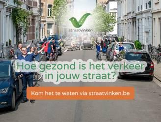 Lierde gaat voetgangers, fietsers en voertuigen in de straten tellen