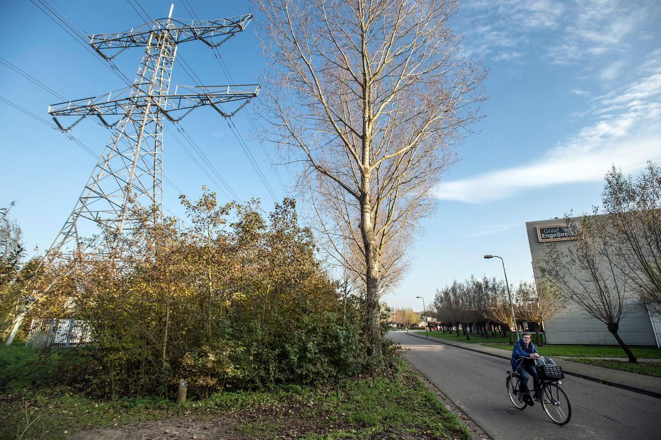 De huidige 150kV-hoogspanningslijn in de Haagse Beemden loopt dwars door de woonwijk. De school Graaf Engelbrecht, hierboven op de foto, staat op een afstand van 25 meter van het tracé.