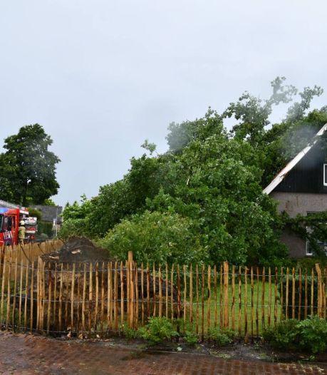 Boom valt op huis in Vroomshoop na stormachtige bui, ook weg geblokkeerd