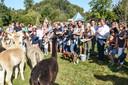 Marijn Devalck doopte de jongste  alpaca's.