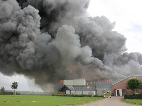 Twintigduizend varkens komen om bij grootste stalbrand ooit