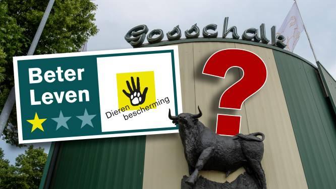 Slachterij Gosschalk ondanks misstanden zelf toezichthouder voor keurmerk: hoe kan dat?