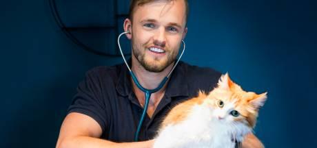Katten met coronastress? Dierenarts Pim (28) weet raad: van geurdispenser tot antidepressiva