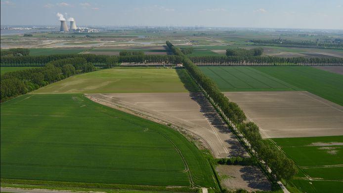 Hertogin Hedwigepolder in Zeeuws-Vlaanderen