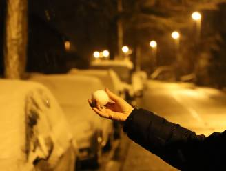 FOTOREPO. Onze regio ontwaakt onder sneeuwtapijt