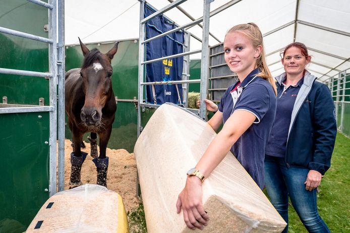Magi, het dressuurpaard van de Zweedse amazone Tinne Vilhelmson-Silfven, arriveerde gistermiddag in Rotterdam. Student paardenhouderij Cindy Koster bezorgde het zaagsel voor zijn box. Rechts docente Elsbeth Gastkemper.