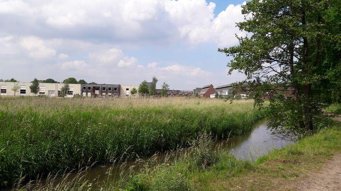 Het Van Besouwterrein vanaf de Nieuwe Leij gezien.