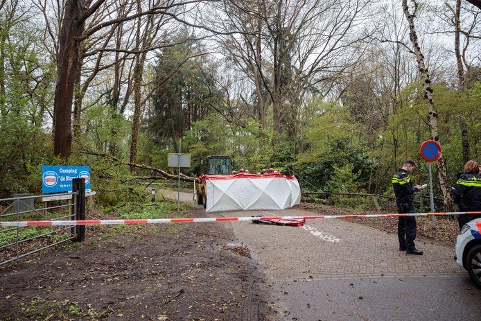 Een omvallende boom heeft dinsdagmiddag een wandelaar dodelijk getroffen in Oudleusen.
