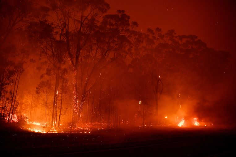 Hevige branden in de kustplaats Sussex Inlet, ten zuiden van Sydney. Beeld Getty Images