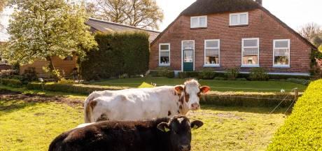 Puzzel met 5300 hectare grond in Staphorst gelegd
