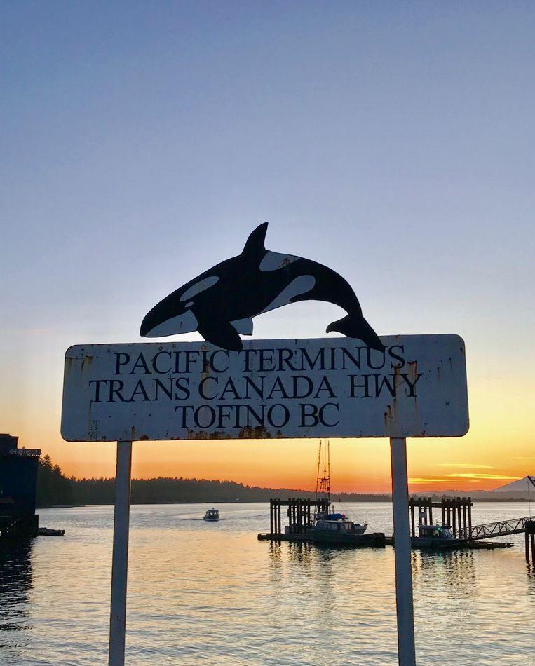 Tofino: hier begint het rijk der orka's.  Beeld Mark Coenen