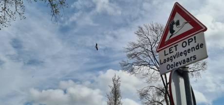 Pas op: laagvliegende ooievaars in Mariahoeve