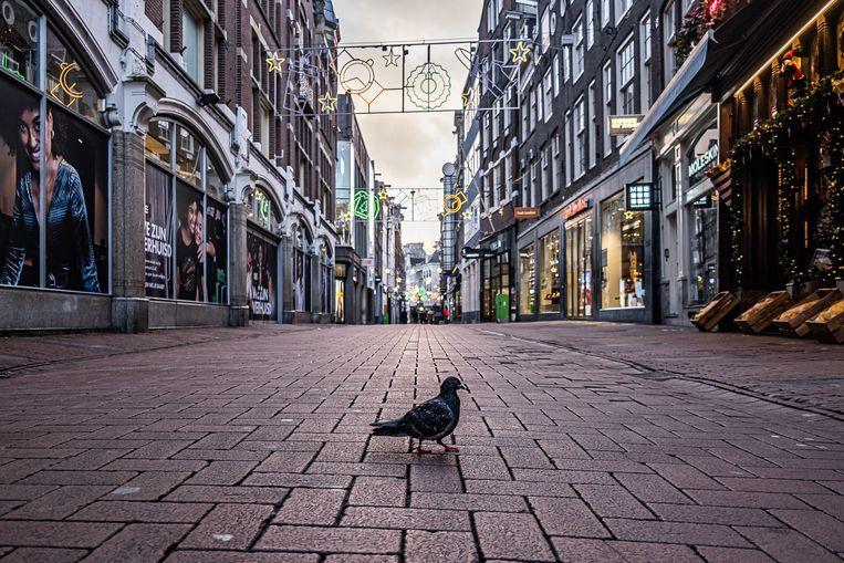 De stad aan de duiven. Beeld Joris van Gennip