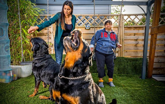 Jennish Batenburg samen met haar tante Usha en de rottweilers Rocky (op de voorgrond) en Radja.