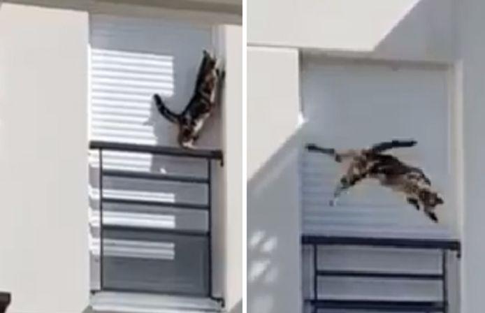 Woodie a glissé de la rambarde du balcon et a fait une chute de trois étages