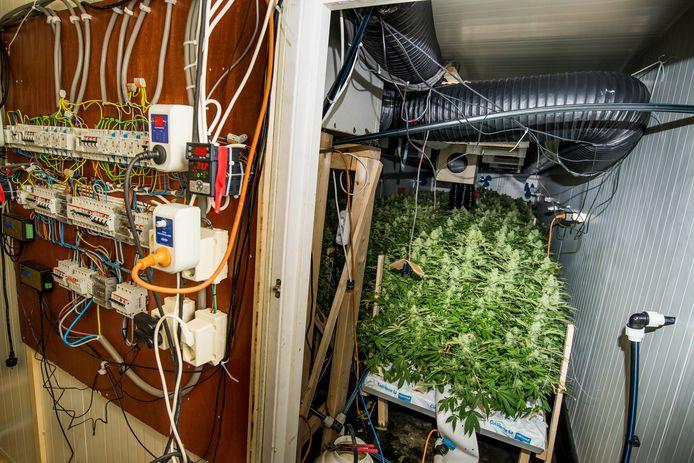 Een hennepkwekerij met een ingenieus gebouwde stroomvoorziening.