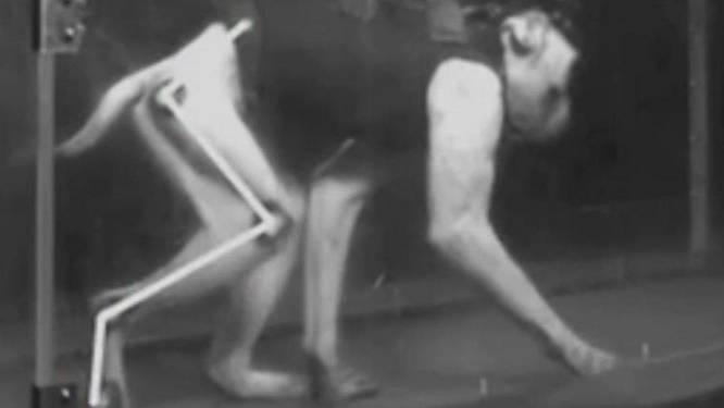Wetenschappers laten verlamde aapjes weer lopen met implantaat