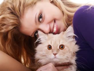 Waarom kat je tot zelfmoord kan drijven