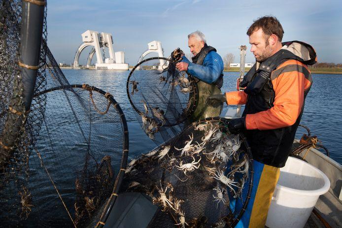 Vader Frans Komen en zijn zoon Frans aan het werk bij de stuw van Amerongen. Jonge paling wordt overgezet naar de overkant van de stuw.