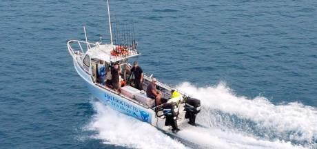 Une baleine heurte un bateau et blesse des passagers en Australie