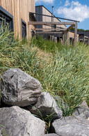 Basaltblokken dragen bij aan de kustsfeer.