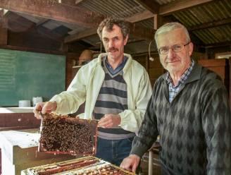 """Imkersvereniging De Westerbie organiseert bijencursus: """"Het lukt niet als de beestjes niet goed worden verzorgd"""""""