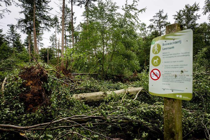 De komende weken wordt er gewerkt aan het veilig maken van het gebied, maar volgens de boswachter kan het best nog even duren voordat de bossen weer helemaal begaanbaar zijn.