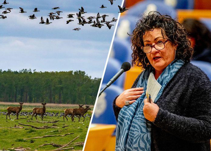 Caroline van der Plas lanceerde het plan om woningen te bouwen in natuurgebied de Oostvaardersplassen.