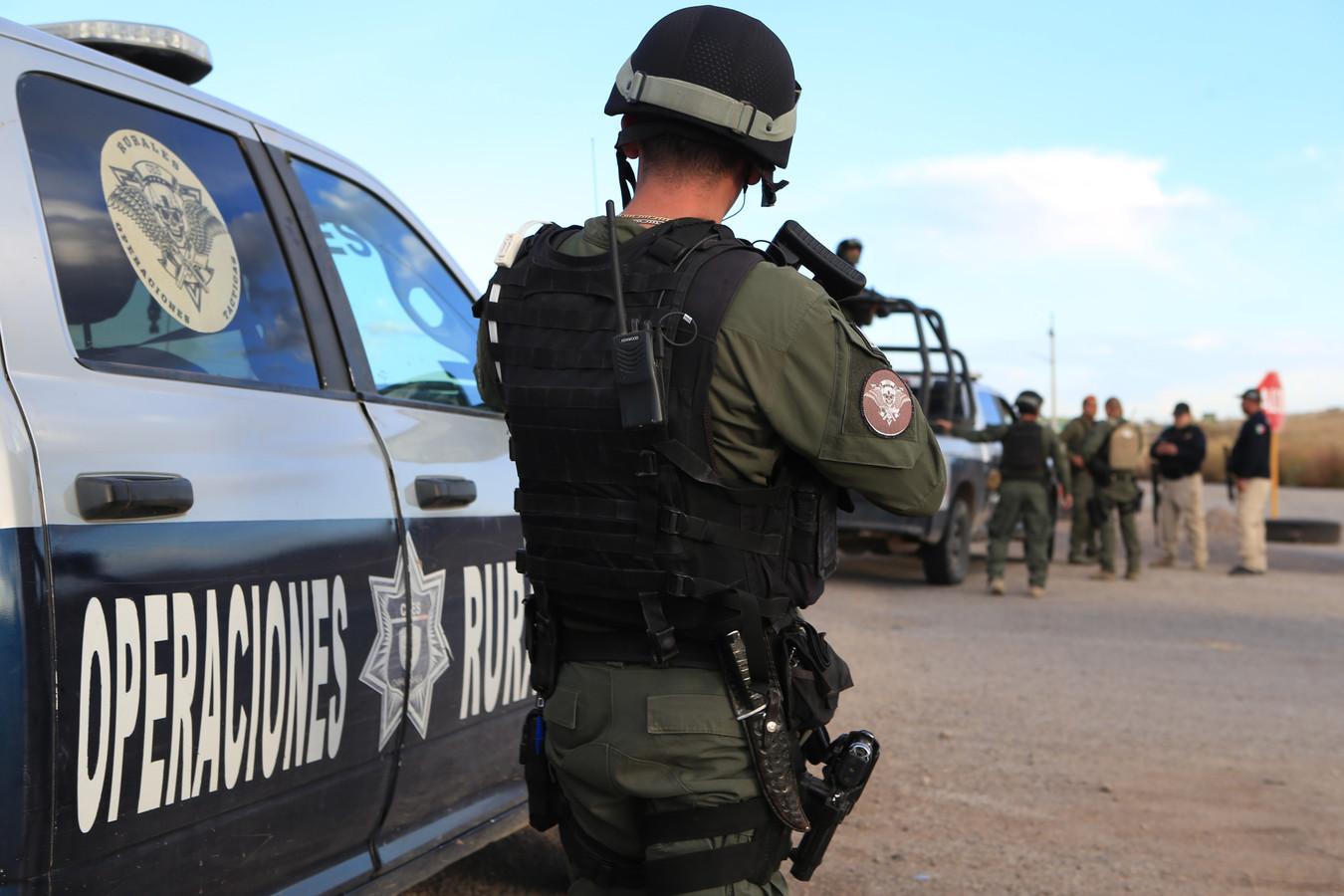 Agenten doen in Mexico onderzoek naar de moord op een mormonenfamilie.