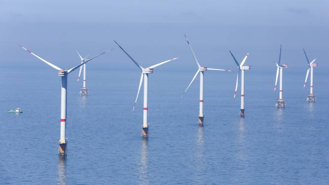 Energieregulator Creg wil af van vaste subsidies windmolenparken