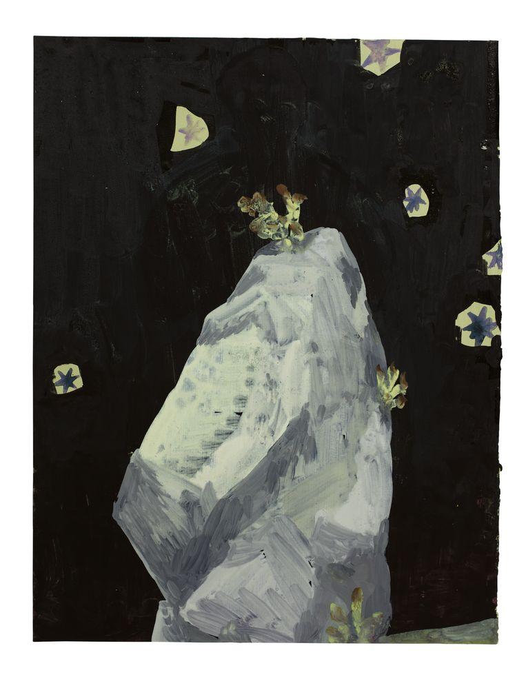 Le rocher Beeld Carole Vanderlinden