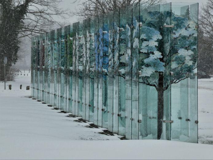 Het Glazen Bos in Haaksbergen in de sneeuw