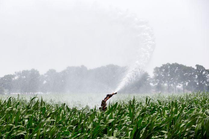 Sproeiers op een akker. Steeds meer boeren krijgen te maken met beregeningsverboden.