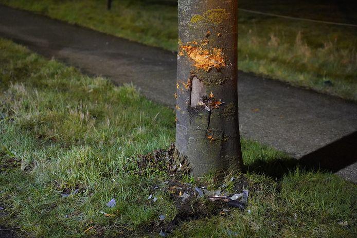 De boom raakte door het ongeval beschadigd.
