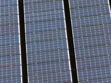 Vergunning 40.000 zonnepanelen op landgoed geweigerd, vlag gaat uit bij natuurclubs