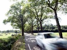 Is de Tolhuisweg in Dalfsen een racebaan en moet die verkeersveiliger worden?