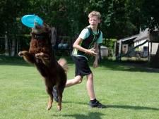 Lewis (12) uit Beerzerveld laat zijn hond vliegen en wint daar prijzen mee