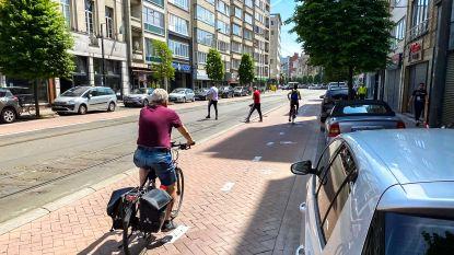 Wie schilderde een fietspad op een deel Turnhoutsebaan?