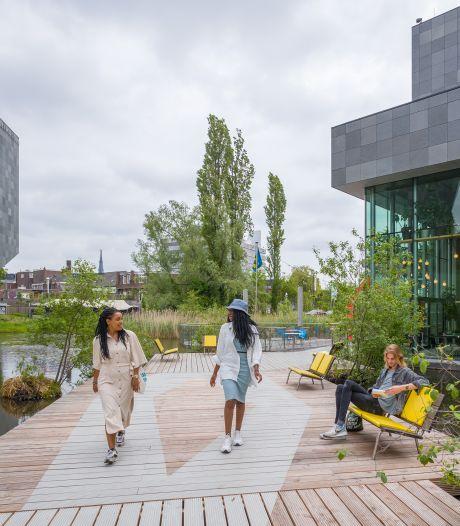 Nieuwe ingang Van Abbemuseum: 'Tijdelijke ingreep om publiekstromen te reguleren'
