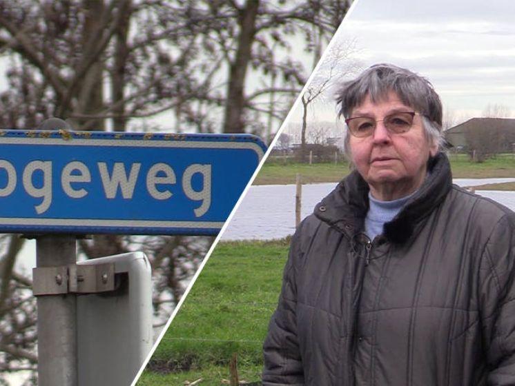Hogeweg: van Duits bastion naar internationaal gezelschap