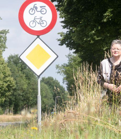Groene weelde langs de weg; CDA in Hardenberg is het een doorn in het oog