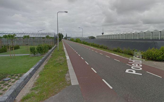 Het Poeldijksepad in Honselersdijk.