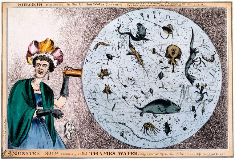 Negentiende-eeuwse satirische gravure van William Heath over de slechte waterkwaliteit van de Theems. De eerste cholera-uitbraak in Londen was in 1831. Beeld Getty Images