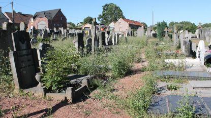 """""""Begraafplaats moet overledenen weer eren"""""""