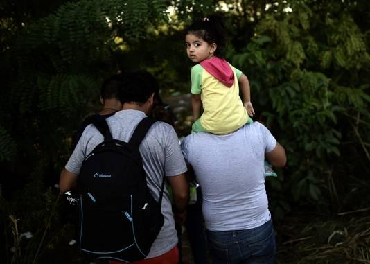 Syrische vluchtelingen proberen de grens tussen Servië en Hongarije over te steken.