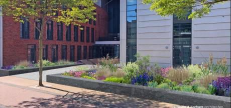Fleur en kleur verdrijft de saaiheid bij gemeentehuis Rijssen, maar eerst het dak dicht