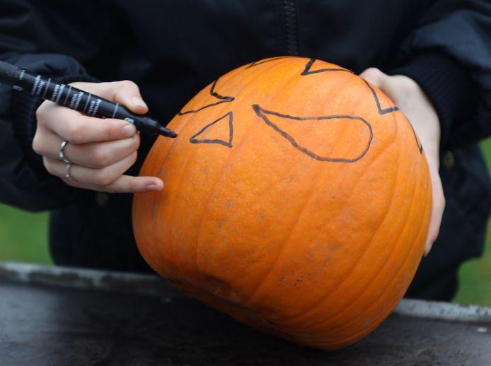 Sophie tekent met stift de rand van de kap en het gezicht van de pompoen.