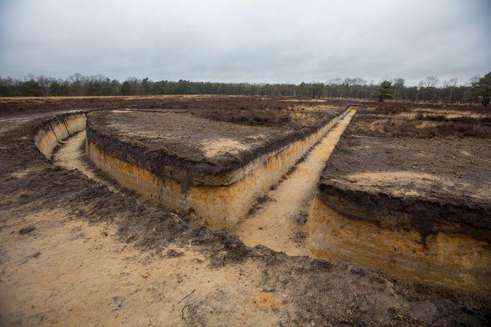Het vredesteken zoals dat is uitgegraven in de Oirschotse Heide.